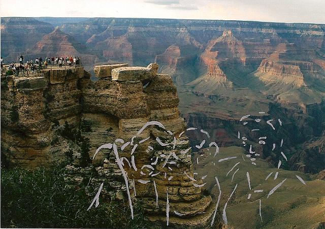 untitled (family trip) 8, grand canyon south rim, az