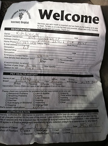 12. intake form for my cousin's dog Petey at the vet, from under the driver's seat