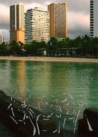 untitled (family trip) 4, waikiki beach, Hawaii
