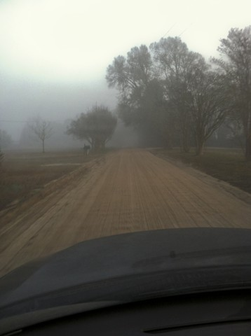 46. driving Beulah lane