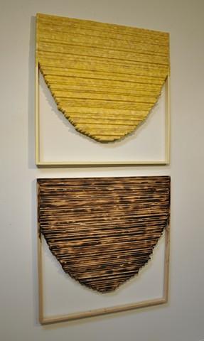 Black/Yellow Comb