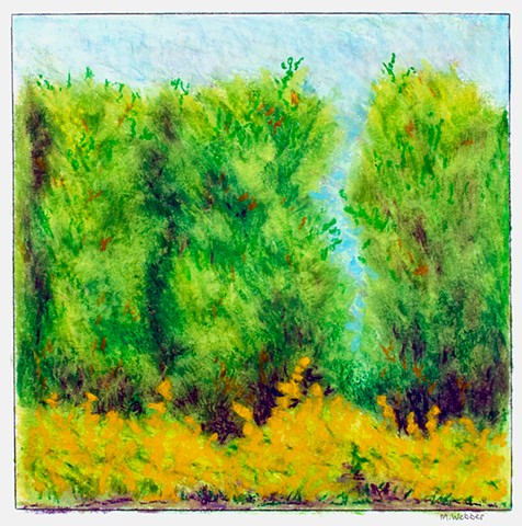 Marion Webber, oil pastel, drawing original art, graphite