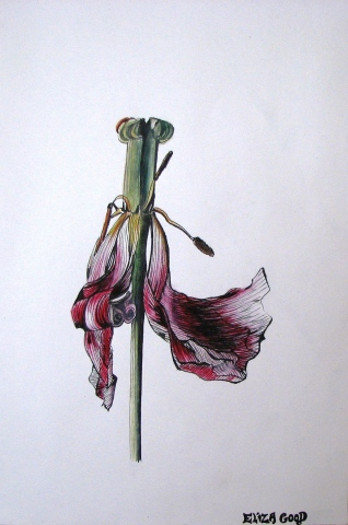 LA TULIPE DANSANTE (THE DANCING TULIP) by Eliza Good