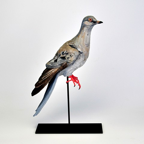 Buttons the Passenger Pigeon