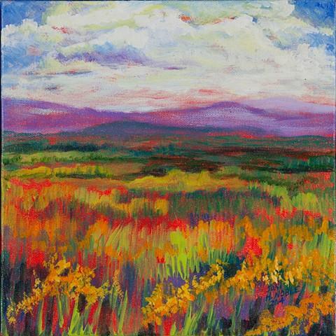 Colorado plains I