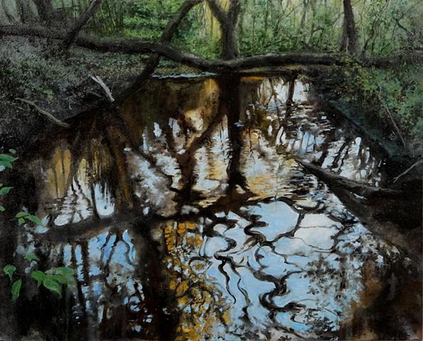 Creek, Landscape, Southern
