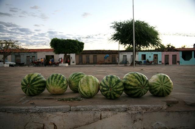 Watermelons, Piabas, Bahia; 2009