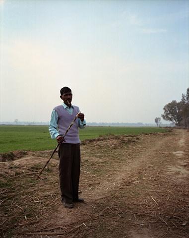 Sugar cane eating; Bhojpur, Uttar Pradesh