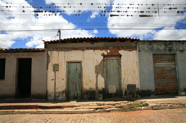 Nests, Piabas, Bahia; 2009