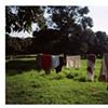 Clothesline; Uttar Pradesh