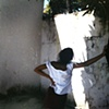 Mango Tree, Recife, Pernambuco; 2006