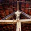 Skull, Paraty, Rio de Janeiro; 2007