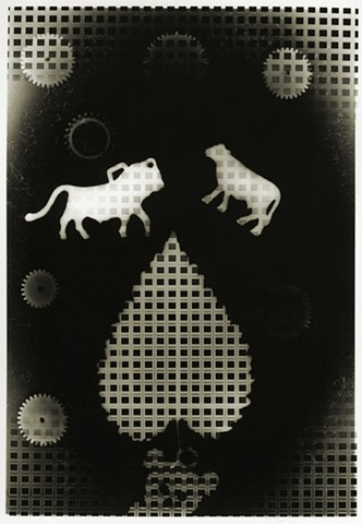 Untitled Photogram No. 16-2014