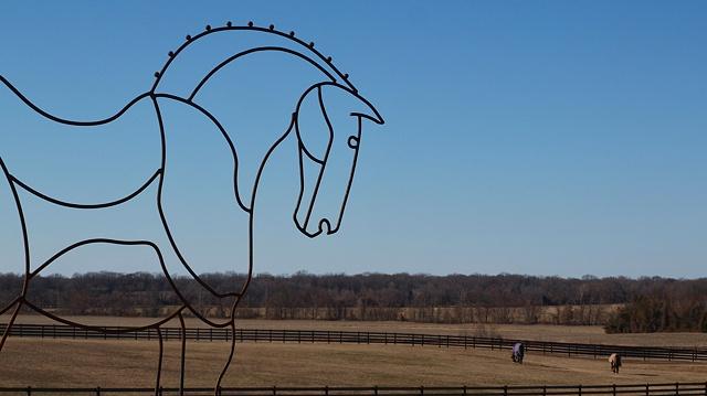 2010 Big Horses