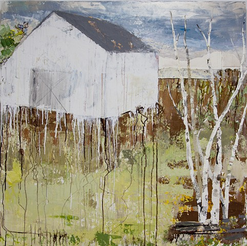 white barn New England barn, birch trees, green, brown, hills, drips