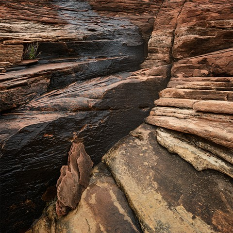 Slick Rock Detail