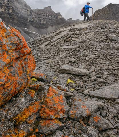 I'm Lichen this Trail  Aug 2019