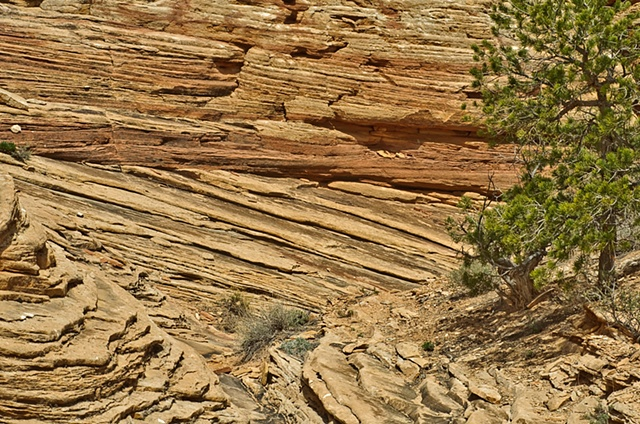 416 Apr 2010 Utah 438