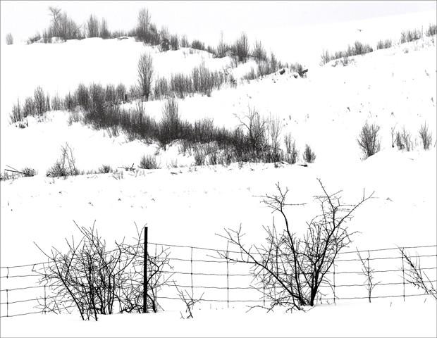 Bognor Hills in Winter  Jan 2014