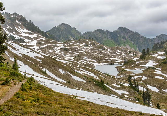 Snow Patterns in the Basin  June 2019