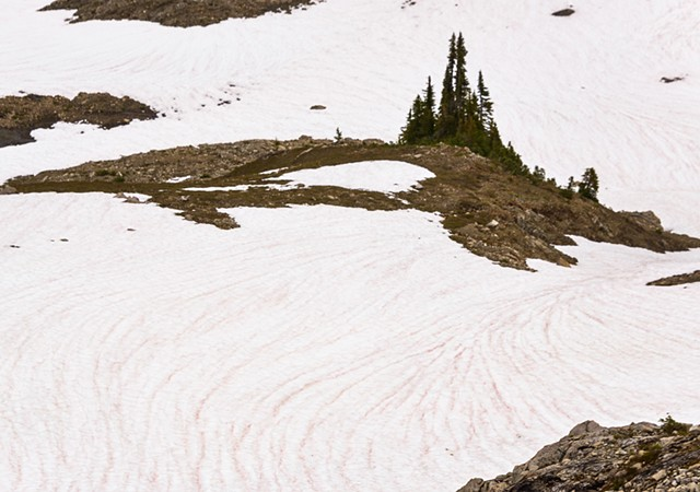 Spring Snow Patterns  June 2019