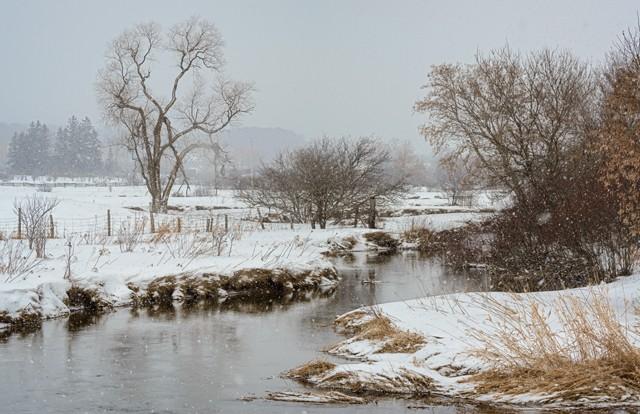 Bighead River in Winter  Jan 2014