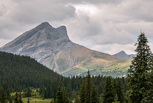 Persimmon Peak  Aug 2018