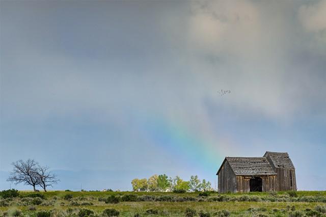 Nevada Rainbow
