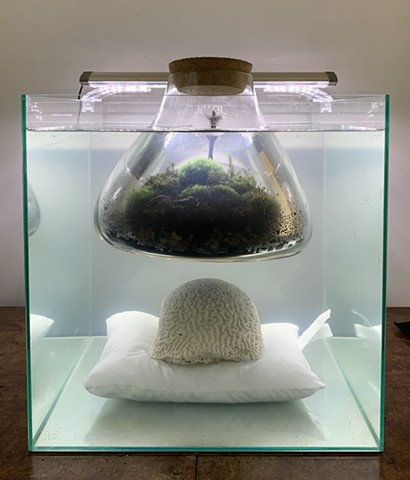 Ecoart, terrariums, anthropocene, sculpture, ecosphere, biosphere, living art