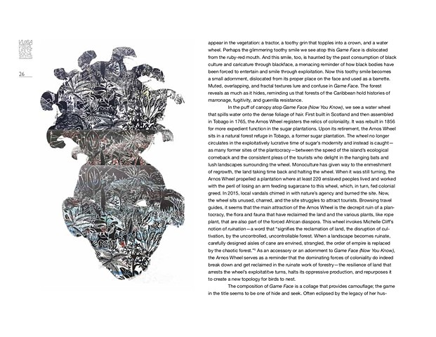 Of Face and Forest: Tricky Textures in the Work of Anna Jane McIntyre by Christina León  VLOSA catalogue VLOSA Catalogue p3