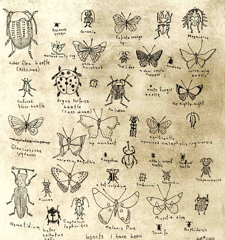 Insects I have been Etching