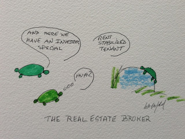 Green turtle and turtle real estate broker
