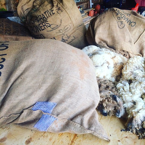 Mended wool growers bag