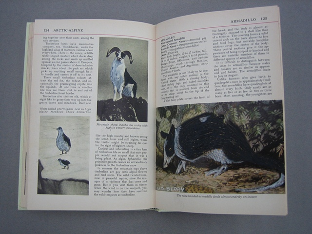 The Otis Nature Encyclopedia Volume 1 (Detail)