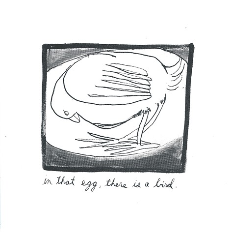 in that egg, there is a bird