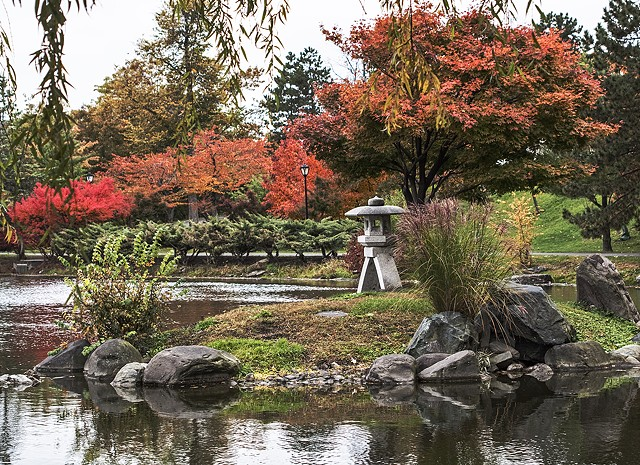 Japanese Garden in Delaware Park, Buffalo, NY, autumn