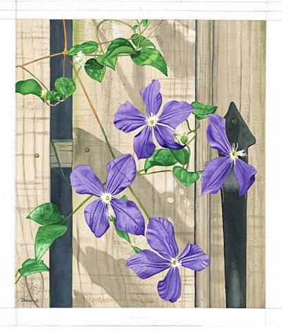 clematis artwork, clematis art, clematis watercolor, purple flower, urban garden, city fence, home decor, purple