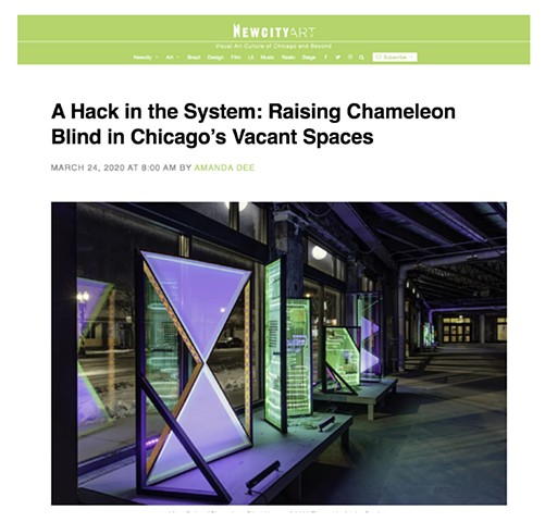 New City Art Review- A Hack in the System: Raising Chameleon Blind in Chicago's Vacant Spaces