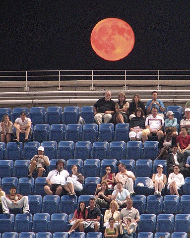 Harvest Moon, US Open