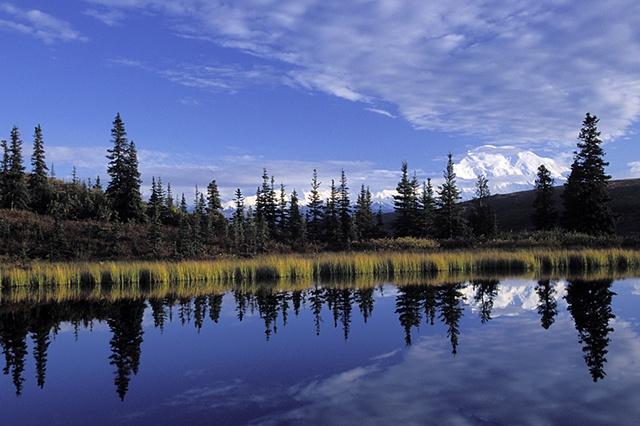 Denali Reflection, Denali National Park, AK
