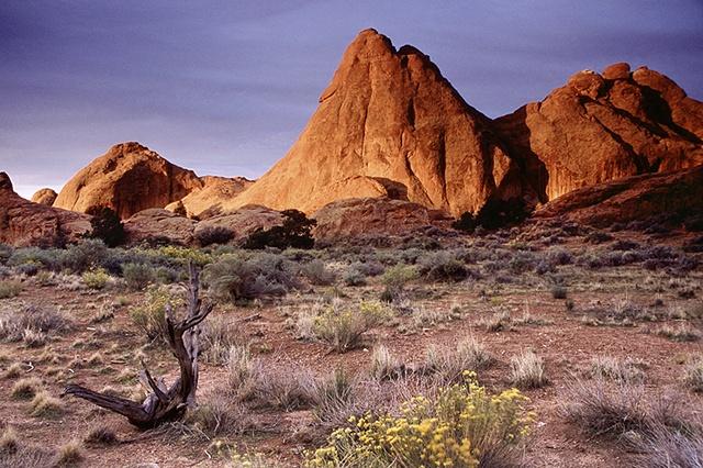 Morning Light, Devil's Garden, Arches National Park, Utah