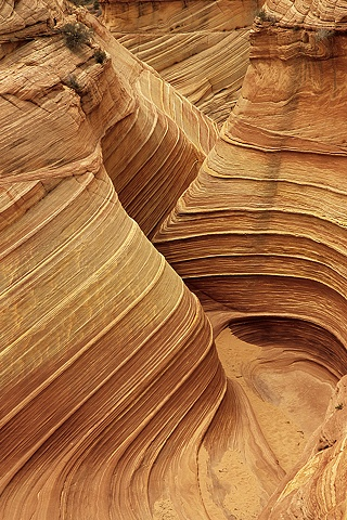 Rock Canyon, Coyote Buttes, Paria Canyon-Vermillion Cliffs Wilderness, Arizona