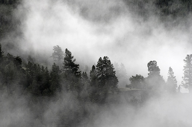 Mountain Fog, San Juan Mountains, CO