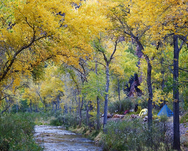 Autumn, Bright Angel Camp, Phantom Ranch, Grand Canyon National Park, Arizona