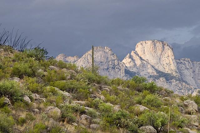 Pusch Ridge, Catalina State Park, Tucson, AZ
