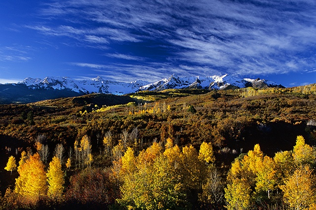 Autumn, Dallas Divide, San Juan Mountains, CO