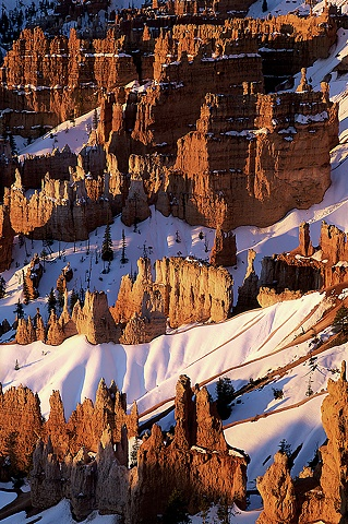 Snow in Bryce Canyon, Bryce Canyon National Park, Utah