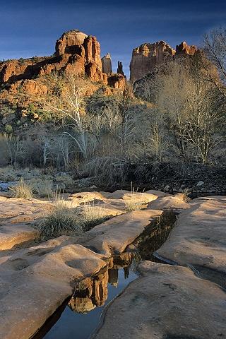 Reflection, Red Rock Crossing, Sedona, AZ