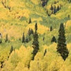 Colorado Splendor, San Juan Mountains, CO