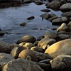 Morning, Sabino Creek, Tucson, AZ
